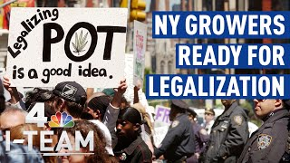 Growers Are Ready for Marijuana Legalization in New York | NBC 4 I-Team