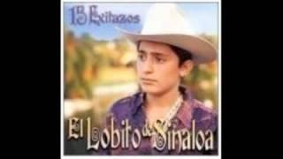 El Lobito de Sinaloa La Rubia y La Morena