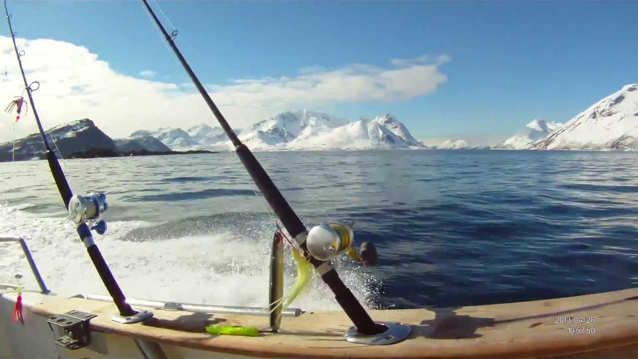 рассказы о рыбалке в норвегии