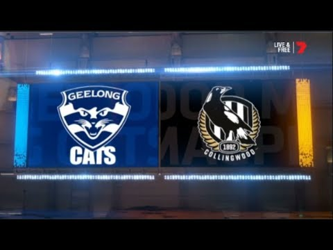 2019 Qualifying Final Collingwood Magpies Vs Geelong Cats Highlights