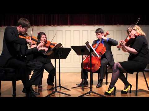 Videri String Quartet ~ RWBY: Red Like Roses