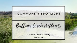 Learn Why We Call Ballona Wetlands the Most Valuable Land in Silicon Beach!