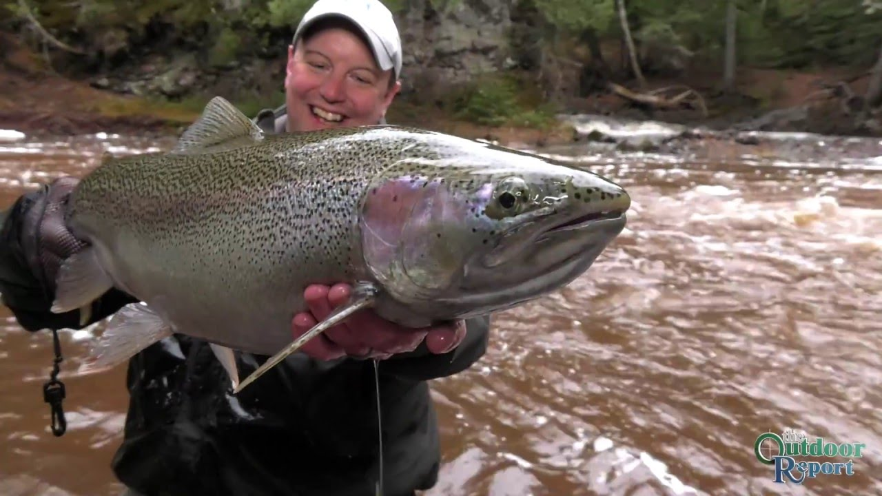 29 inch steelhead lake superior north shore youtube for Fish in lake superior