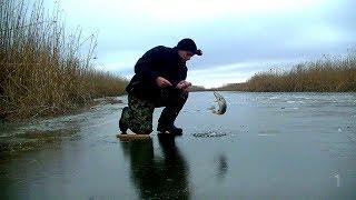 Рыбалка в Астрахани на жерлицы.