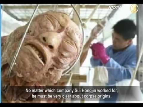 !! XÁC NGƯỜI làm mô hình bán ở Trung Quốc - cứ như phim kinh dị !!