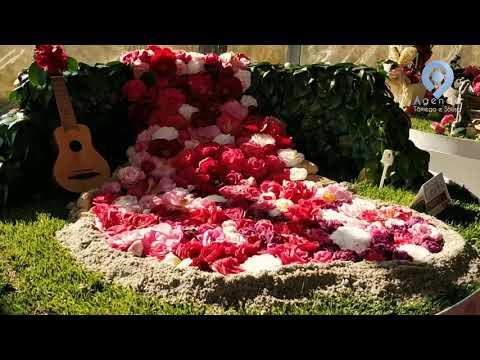 XVI Festa Internacional das Camélias - Celorico de Basto