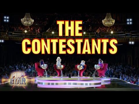 Contestants | Pup Star | Disney Channel
