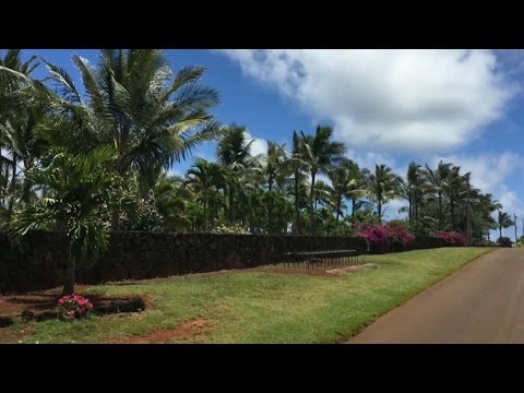 Zuckerberg Builds Controversial Wall In Hawaii Youtube