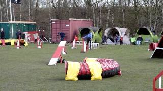 A2 & J2 Agility Oster Turnier Hoope 04.04.2015