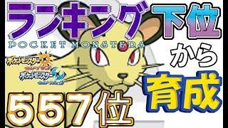 【ポケモンUSUM】ランキング下位から育成3 原種ペルシアン【557位】 thumbnail