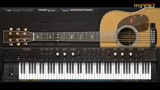 Ample Guitar M Lite - Free VST - myVST Demo