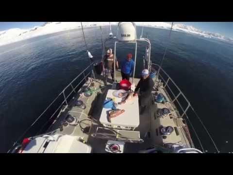 Antarctica  Trip January 2015