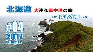 霧多布岬へと向かう道道123号線の途中、琵琶瀬展望台に立ち寄ると霧...