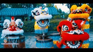 Lion Dance in Vietnam 2019 by LSR Gia Thang