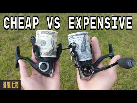 The Difference Between CHEAP And EXPENSIVE Fishing Reels- Explained