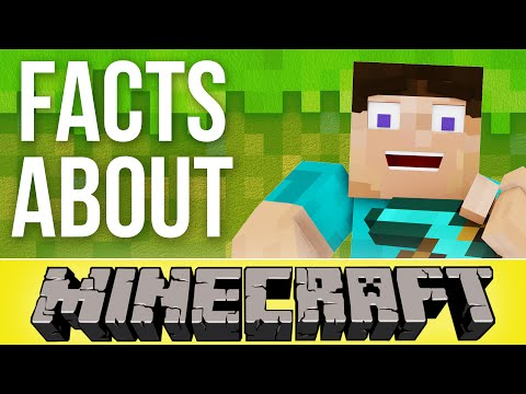 Facts That Prove Minecraft Rules