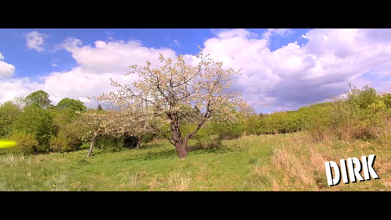FPV-DIRK:????????FLOWERING TREES ???????? ENJOY THE SPRING ???????? (EPIC, CINEMATIC) (1440/60p) картинки