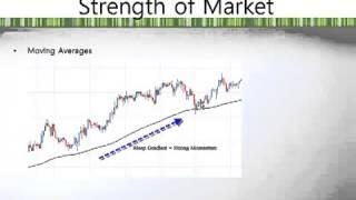 Forex Volatility Indicator Explained