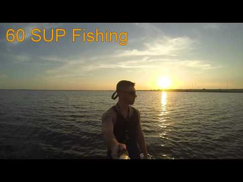 Courtney Campbell Causeway SUP Fishing