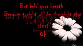 Secondhand Serenade - Fall For You (lyrics)