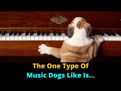 Music Affects Dogs And Can Change Your Dog's Behavior! Why You Should Avoid One Type Of Music.