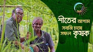 শীতের আগাম সবজি চাষে সফল কৃষক | কৃষি দিবানিশি | Shykh Seraj |