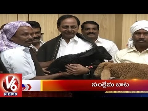 9PM Headlines | NDA's Presidential Candidate | Sheep Distribution | Heavy Rains | Yoga Day | V6 News