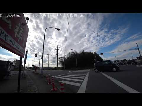 【Broadcasting】 Chiba - Tokyo City Cycling 28【SONY HDR-AS300】