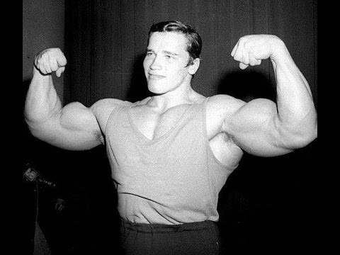 Arnold Schwarzenegger 7x Mr. Olympia (The Austrian Oak ...