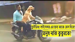 আমি অবাক দেখুন ভিডিওতে।বাইক চালায় কুকুরে দেখুন।See the dog riding the bike.না দেখলে মিস. funny video