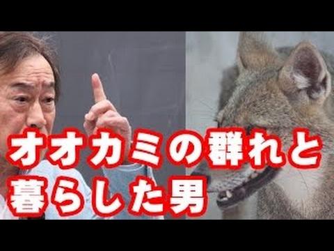 衝撃】武田鉄矢、「狼の群れと暮...