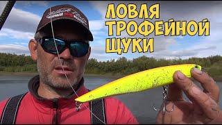 видео Ловля трофейной щуки