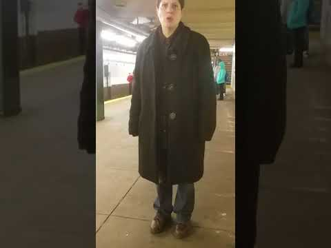 Crazy lady in NYC subway goes crazy