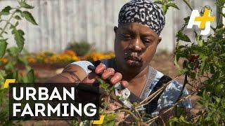 Black Panther-Inspired Urban Farming