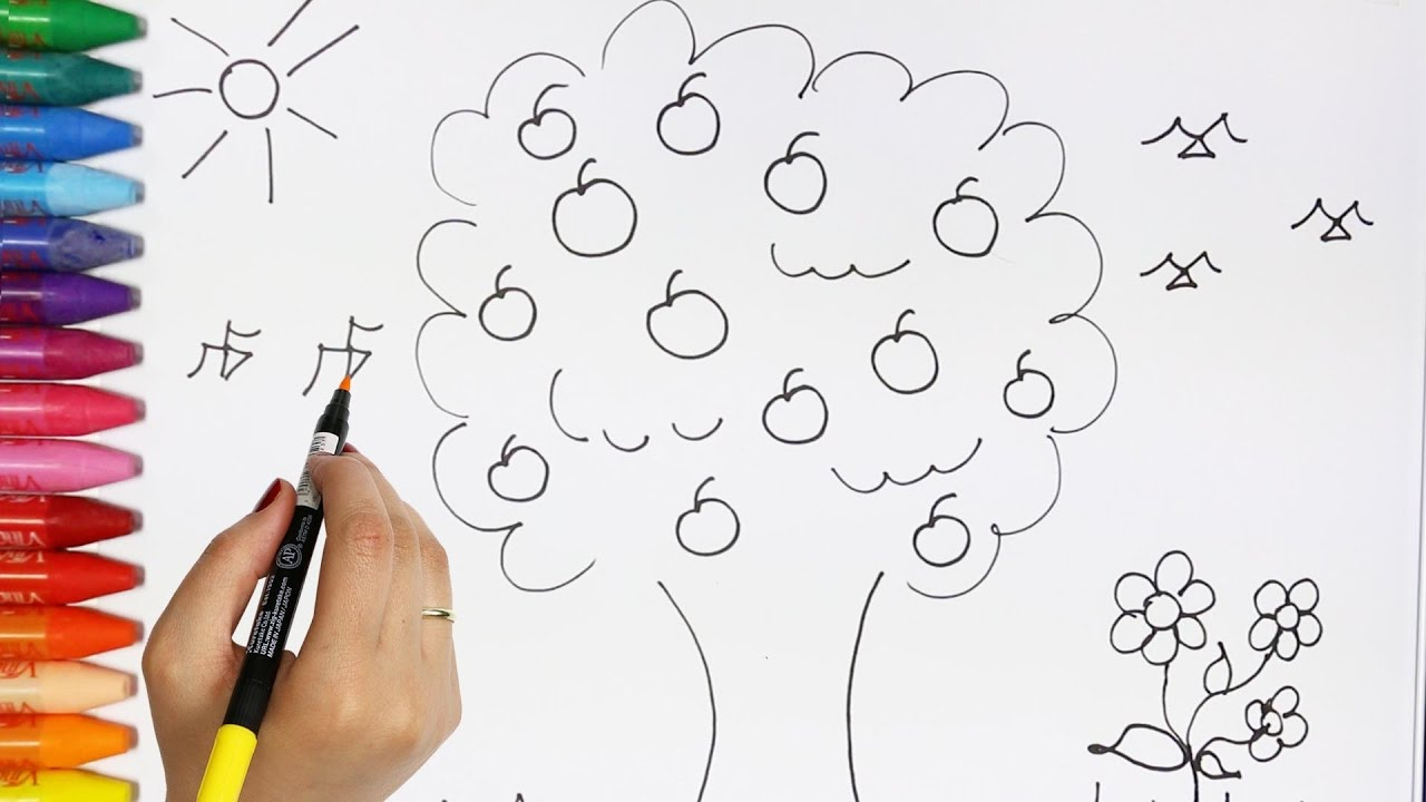 how to draw and color a tree how to draw and color kids tv