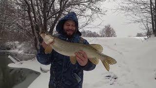 Супер рибалка на Спінінг! Відкриття сезону 2019