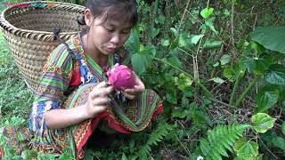 Primitive Life - Forest people seeking food and natural fruits meet ethnic girl