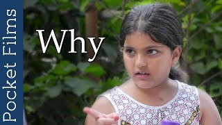 Hindi Short Film - Why? | Do political opinion matter in a relationship?