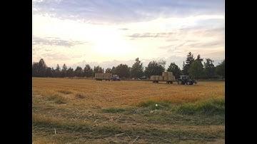 Tracteurs à Tournay