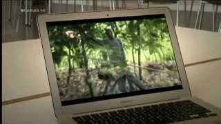 Vranckx: Kinderarbeid op cacaoplantages in Ivoorkust (Canvas)