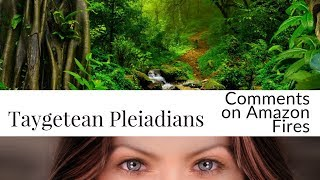 Taygetean Pleiadians (Swaruu of Erra): Questions and Answers