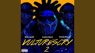 Play VULTURES CRY 2 (feat. WizDaWizard and Mike Smiff)