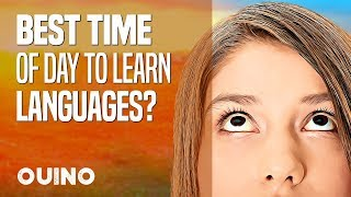 What Is the Best Time of Day to Learn a New Language? - OUINO™