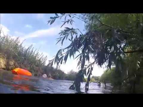 af92d8b350df2 KinaMara on Tour  Swim the Cam - YouTube