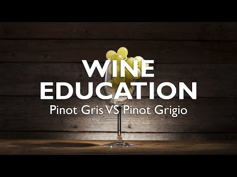 wine article WINE EDUCATION  Pinot Gris VS Pinot Grigio
