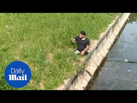 Pet Central - Disabled man lowers himself out of a wheelchair to save a cat in distress