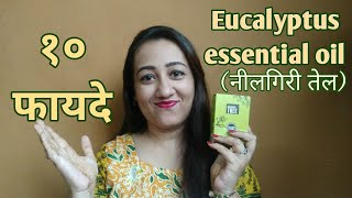 10 BENEFITS OF EUCALYPTUS OIL(नीलगिरी तेल) For Hair, Health & Skin| Speaking tree Essential oils.
