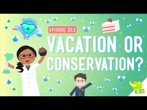 Vacation Or Conservation (Of Mass): Crash Course Kids #23.1