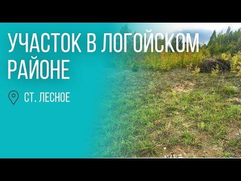 Минск | Хороший участок в Логойском районе | Бугриэлт