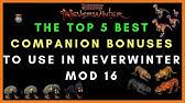Mod 16 - Companions of Interest (Neverwinter) - YouTube